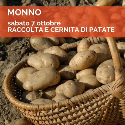 Monno