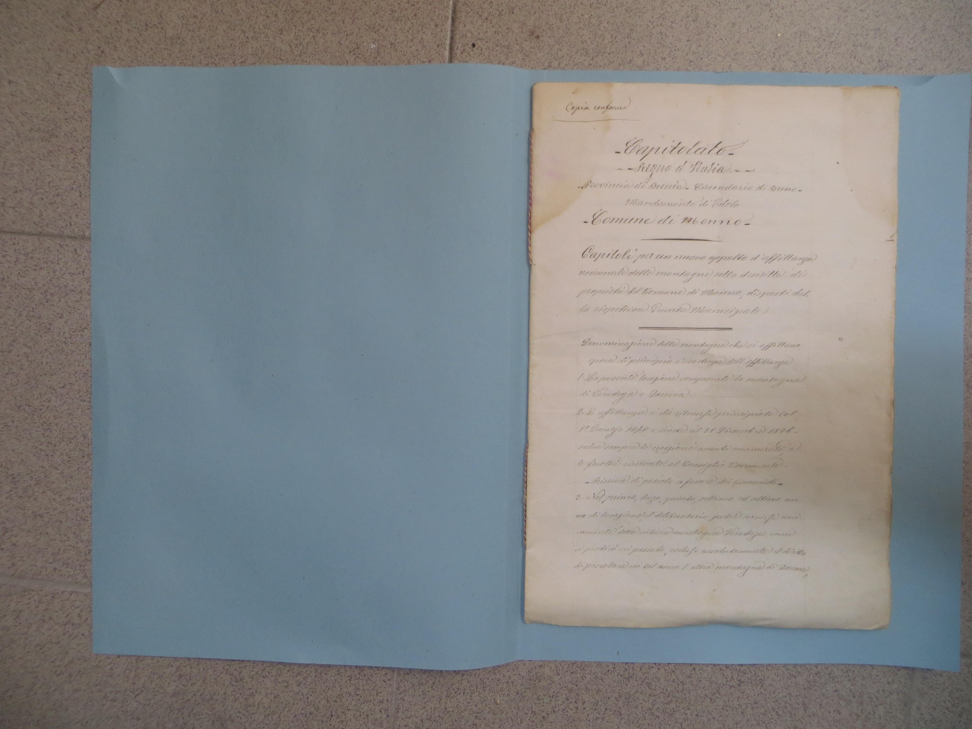 IMG_0025 - Capitoli affittanza malghe Varadega Dorena 1877